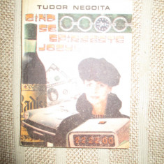 Cand se sfarseste jocul - Tudor Negoita - Carte politiste