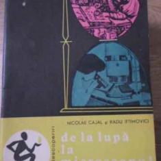 De La Lupa La Microscopul Protonic - Nicolae Cajal, Radu Iftimovici, 396584 - Carti Electrotehnica