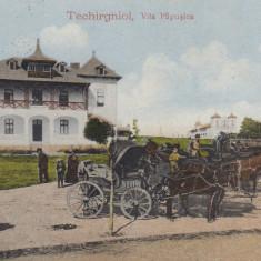 TECHIRGHIOL VILA PAPUSICA TRASURI CIRCULATA 1923 - Carte Postala Dobrogea dupa 1918, Printata