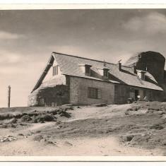 Bucegi - Cabana Omu - lot 2 carti postale - interbelice, Necirculata, Fotografie, Romania 1900 - 1950