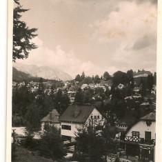 Sinaia - Vederi din oras - lot 6 carti postale - interbelice, Necirculata, Fotografie, Romania 1900 - 1950