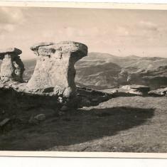 Bucegi - Babele - lot 3 carti postale - interbelice, Necirculata, Fotografie, Romania 1900 - 1950