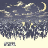 Troubled Horse - Revolution On Repeat ( 1 CD ) - Muzica Rock