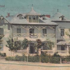TECHIRGHIOL VILA PAPUSICA CIRCULATA 1923 - Carte Postala Dobrogea dupa 1918, Necirculata, Printata