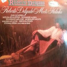 Disc Vinil - Roberto Delgado - Muzica Drum and Bass