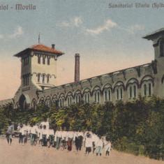 TECHIRGHIOL - MOVILA SANATORIUL EFORIE SPITALUL CIVIL EDITURA G. T. CONSTANTA - Carte Postala Dobrogea dupa 1918, Circulata, Printata