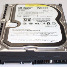 Hard disk Western Digital WD360 RAPTOR 36.7GB 3.5'' SATA