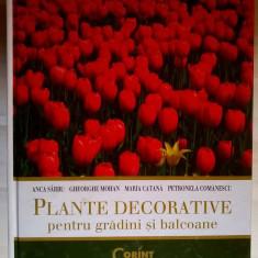 A. Sarbu, s.a. - Plante decorative pentru gradini si balcoane