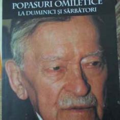 Popasuri Omiletice La Duminici Si Sarbatori - Pr. Zosim Oancea, 396719 - Carti ortodoxe