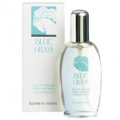 Elizabeth Arden Blue Grass Eau de Parfum 100ml - Parfum femeie Elizabeth Arden, Apa de parfum