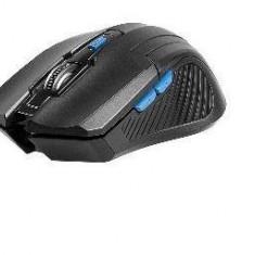 Mouse Tracer TRACER TRAMYS45447, Fairy Black RF nano, negru, USB, Optica