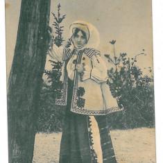2162 - Alba, SEBES, Ethnic woman - old postcard - unused