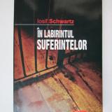Rezistenta anticomunista, Detentie: In labirintul suferintelor, Iosif Schwartz - Istorie