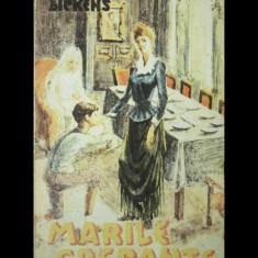 MARILE SPERANȚE - CHARLES DICKENS - EDITURA TRIBUNA - ANUL 1992 - Roman