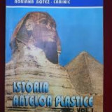 Adriana crainic istoria artelor plastic vol i - Carte Istoria artei