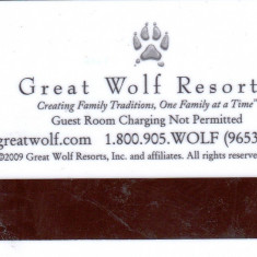 Card plastic intrare camera hotel Great Wolf Lodge, USA - lot colectie