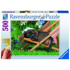 Puzzle Catel pe sezlong, 500 piese Ravensburger