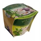 Lumanare Five O' Clock Bergamot & Plum & Cherry Blossom, 115 gr - Lumanari tort copii