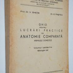 Ghid pentru lucrari practice de anatomie comparata ANIMALELE DOMESTICE - Cal - Carte Medicina veterinara