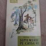 SEPTEMBRIE PE CRISURI-STEFAN LUCA - Roman