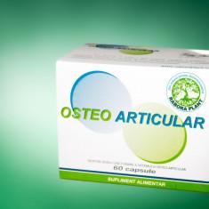 Tratatment naturist dureri osteo-articlare