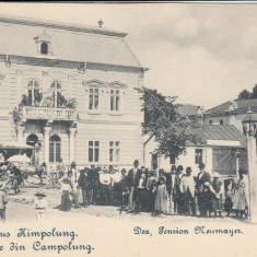 SALUTARE DIN CAMPULUNG MOLDOVENESC PENSION NEUMAYER HOTEL CAFENEA SINAGOGA - Carte Postala Bucovina pana la 1904, Necirculata, Printata