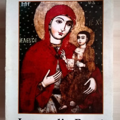 Dorina Sabina Parvulescu - Icoane din Banat