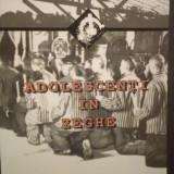 ADOLESCENTI IN ZEGHE - TRAIAN BODEA - FOST DETINUT POLITIC - Biografie