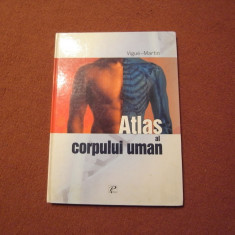 Atlas al corpului uman - Vigue Martin