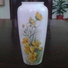 Vaza Portelan Rosenthal