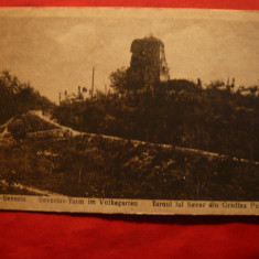 Ilustrata Turnu Severin -Turnul lui Sever-Gradina Publica -ocupatie germana wwI - Carte Postala Oltenia 1904-1918, Necirculata, Printata