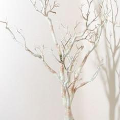 Natural Manzanita copac (41 inch) - Safir