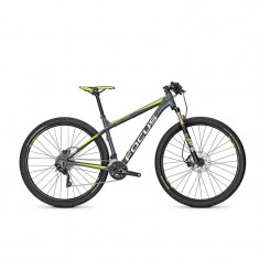 Bicicleta Focus Black Forest LTD 29 20G 2016-500 mm - Mountain Bike
