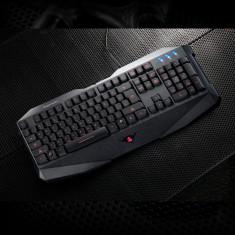 Tastatura Gaming Segotep Colorful GK1000, Cu fir, USB, Tastatura iluminata