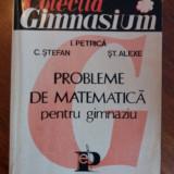 Probleme de matematica - I. Petrica / R3P3F - Carte Matematica