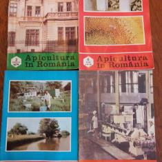 Lot 18 reviste Apicultura in Romania / R3P3F - Carti Agronomie