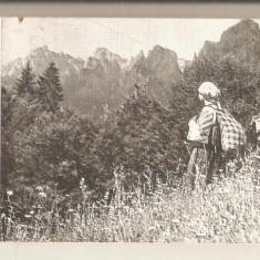 Tinutul Neamt-Traditii Populare - Carte traditii populare