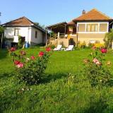 Casa la tara - Casa de vanzare, 4000 mp, Numar camere: 3, Suprafata teren: 4000