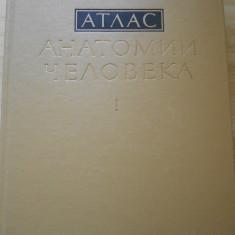 SINELNIKOV--ATLAS DE ANATOMIE - VOL. I-- IN RUSA