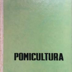 POMICULTURA - A. Negrila - Carti Agronomie