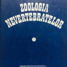 ZOOLOGIA NEVERTEBRATELOR - Fira, Nastasescu - Carti Zootehnie
