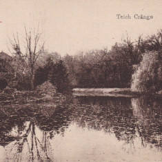 BUZAU, TEICH CRANGU - Carte Postala Muntenia dupa 1918, Necirculata, Printata