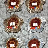 Colectie Insigne Fruntas In Intrecere - Insigna