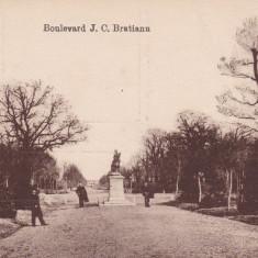 BUZAU, BULEVARDUL I. C. BRATIANU - Carte Postala Muntenia dupa 1918, Necirculata, Printata