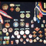 Colectie pionieri