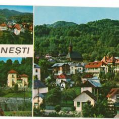 CPI (B8605) CARTE POSTALA - OLANESTI, MOZAIC - Carte Postala Oltenia dupa 1918, Necirculata, Fotografie