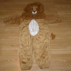 Costum carnaval serbare leu pentru copii de 2-3 ani, Marime: Masura unica, Culoare: Din imagine