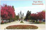 Carte postala CP MS056 Targu Mures - Piata Trandafirilor