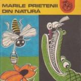 Marile prietenii din natura - Carte educativa
