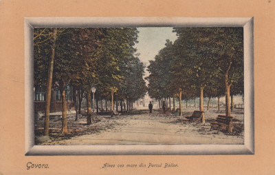 GOVORA  ALEEA CEA MARE DIN PARCUL BAILOR CIRCULATA 1911 STAMPILA TREN foto